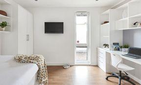 Premier En-suite Plus in a 13 Bed Apartment
