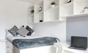 Premier En-suite in a 7 Bed Apartment