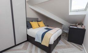 3 Bedroom Apartment (Medium)