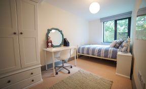 7 Bedroom 2 Bath Apartment