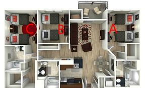 3 Bedroom / 3 Bathroom  Michelangelo Room B - Shared