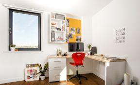 Premium plus Studio
