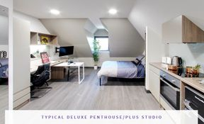 Deluxe Penthouse