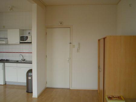 Sunny unfurnished studio apartment in Nietap