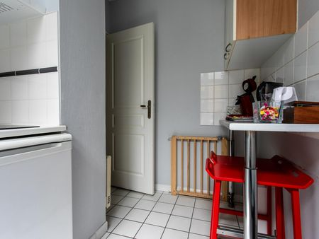 Cosy apartment in central Lille