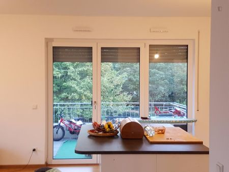 Cool 3-bedroom apartment near the Bonn, Auerberg Pariser Str. station