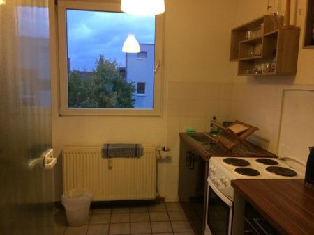 Spacious studio in the large Ehrenfeld district