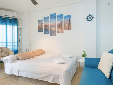 Nice apartment near Universitat d´Alacant