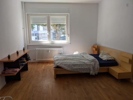 Spacious Room in City Centre