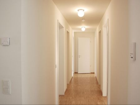 Lovely double bedroom in a 4-bedroom apartment near Harburg Rathaus train station