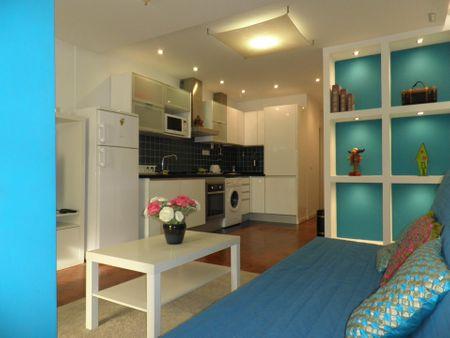 Very nice 1-bedroom apartment near the Roma metro