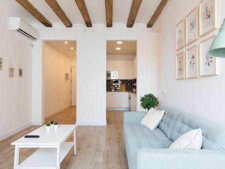 Cozy 2-bedroom apartment near Universitat metro station