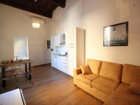 Roomy 1-bedroom apartment next to Largo di Torre Argentina