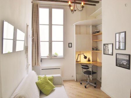 Posh studio flat in next to Ile de la Cité