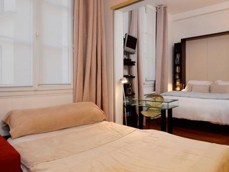 Amazing double bedroom apartment in Louvre-Chatelêt