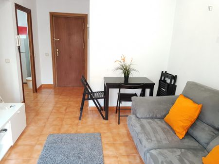 Charming 1-bedroom apartment near Delicias metro station