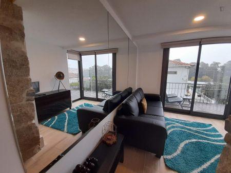 Amazing 3-bedroom apartment close to Vila Nova de Gaia train station