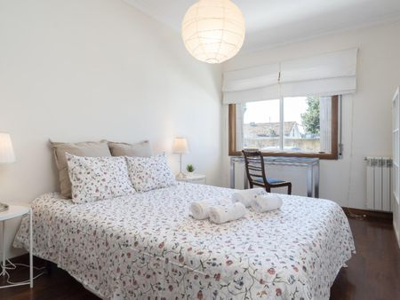 Nice 1 bedroom apartment in Maia