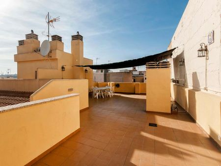 Alluring single bedroom in Alicante