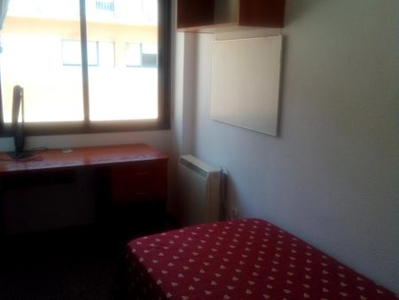 Lighty Studio in a Residence Hall, shared kitchen with another student