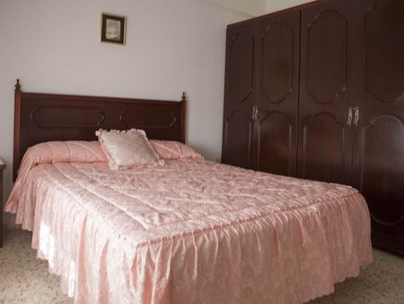 Very comfortable apartment close to the Puerto Real train station