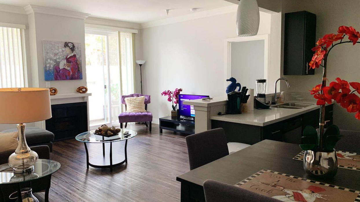 Luxury Plaza Apartments