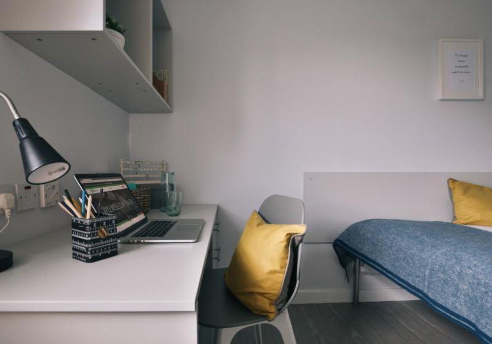 Platinum Mini Studio