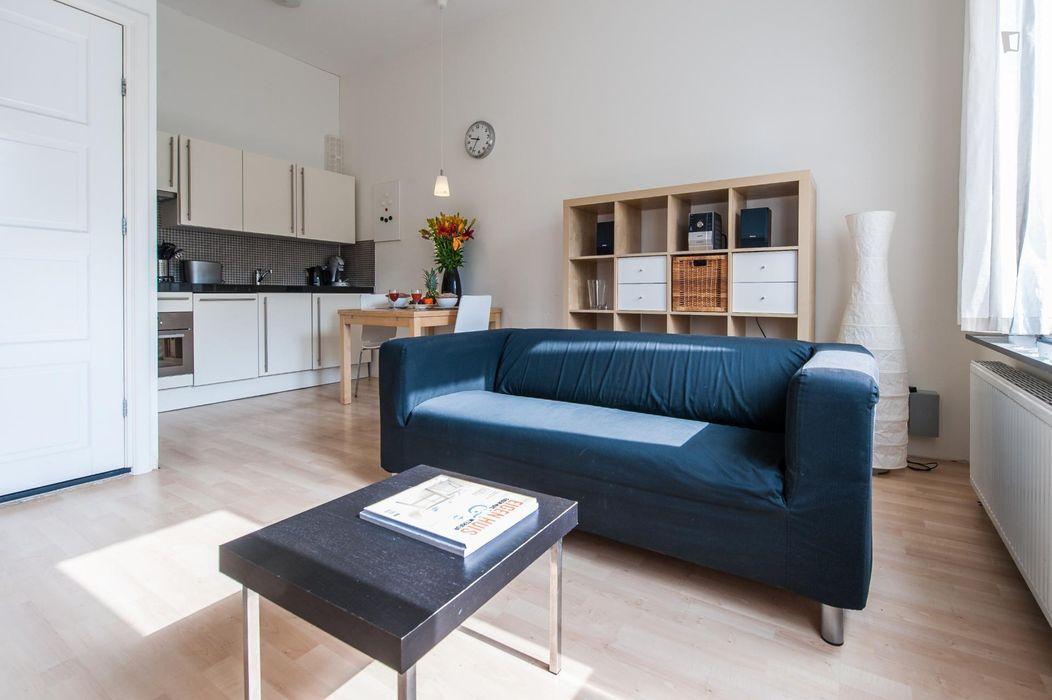 Cool 1-bedroom apartment near Berlagebrug bridge