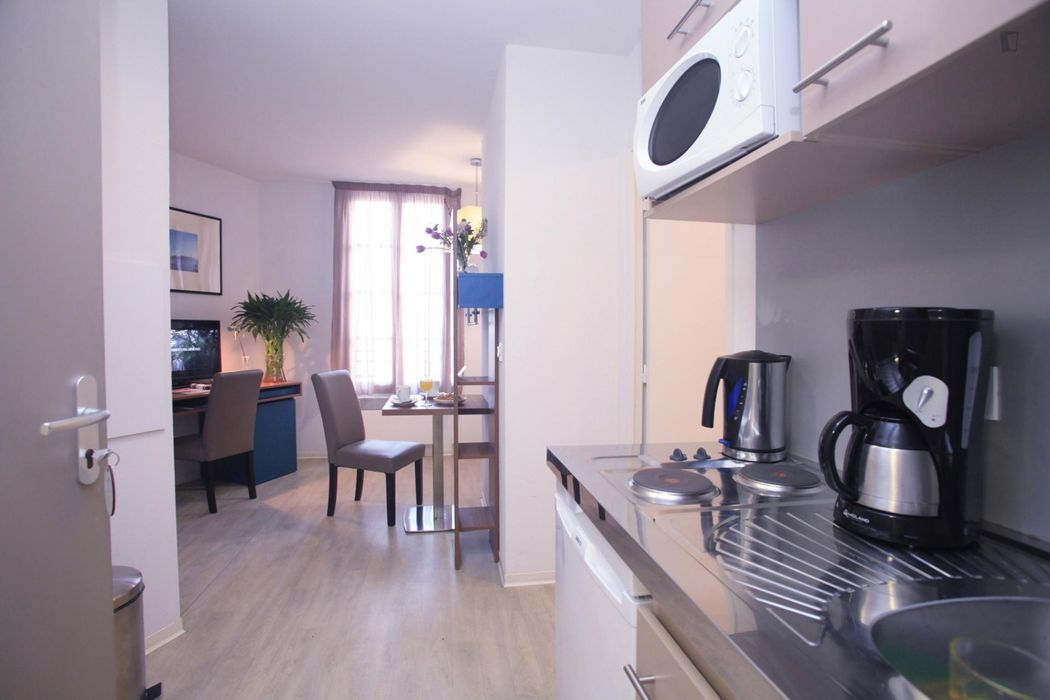 1-Bedroom apartment in Thiers