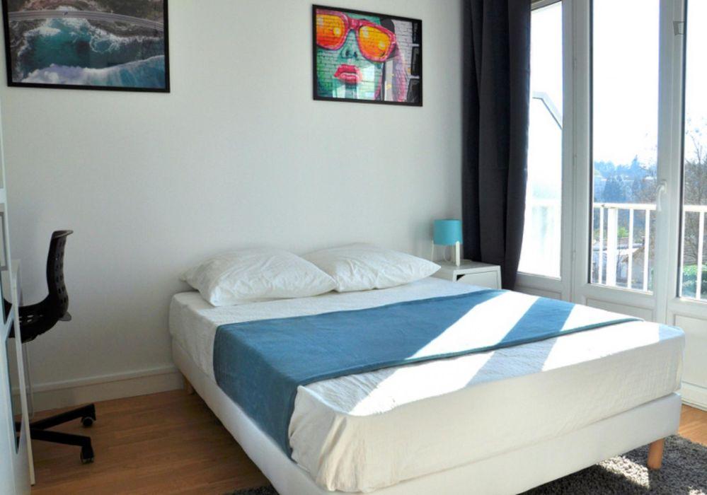 Nice double bedroom near Parc de La Gaudinière