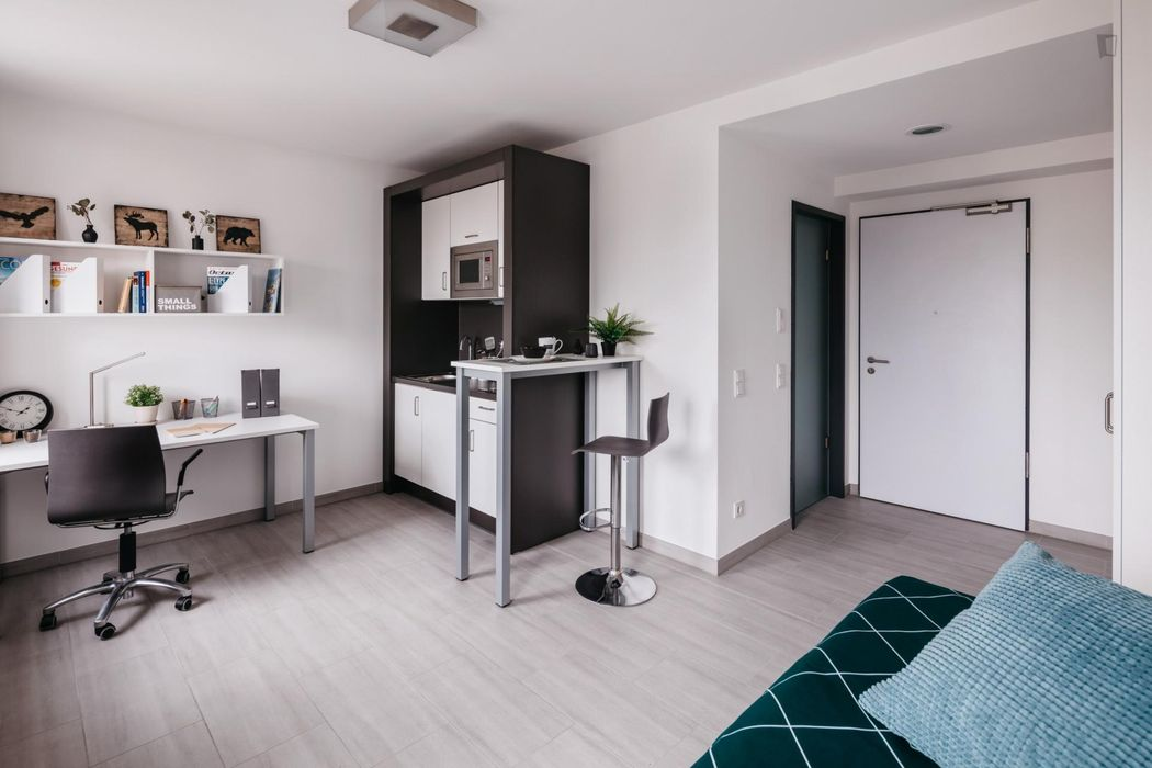 Nice studio M Gold, in a residence near Darmstadt central station.