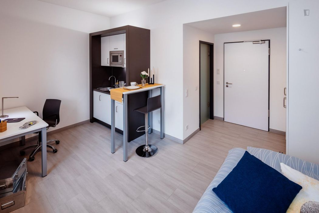 Alluring studio S Platinum, in a residence near Darmstadt central station.