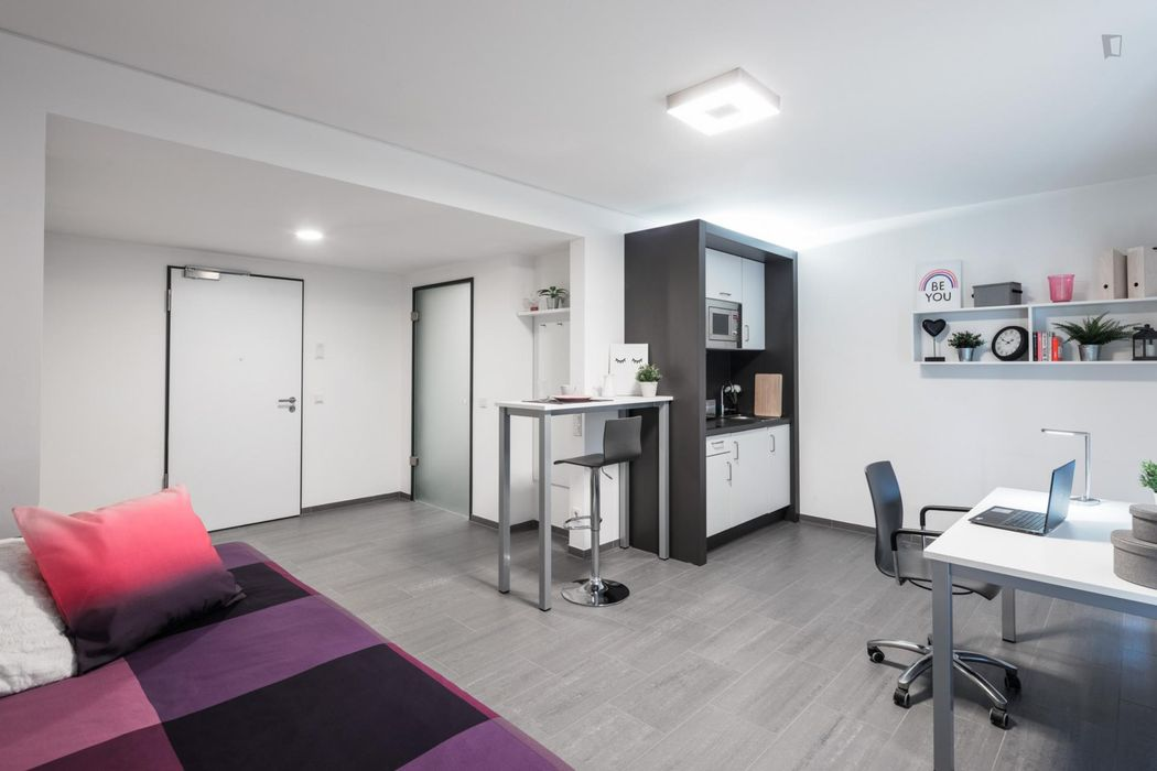 Comfortable studio XL Silver, in a residence near Darmstadt central station.