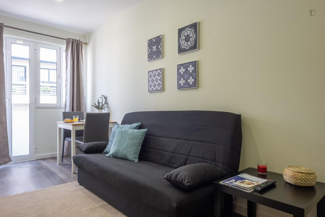 1-bedroom apartment, with Kitchenette and Living Room with a balcony to the city Center