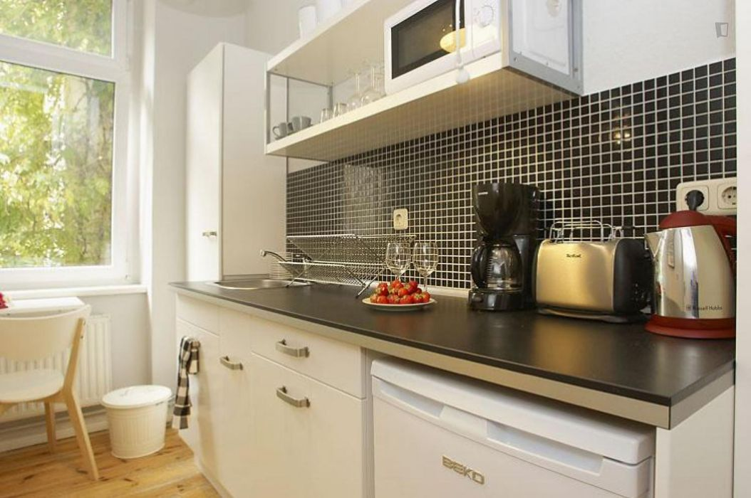 Spacious 1-bedroom apartment in Prenzlauer Berg