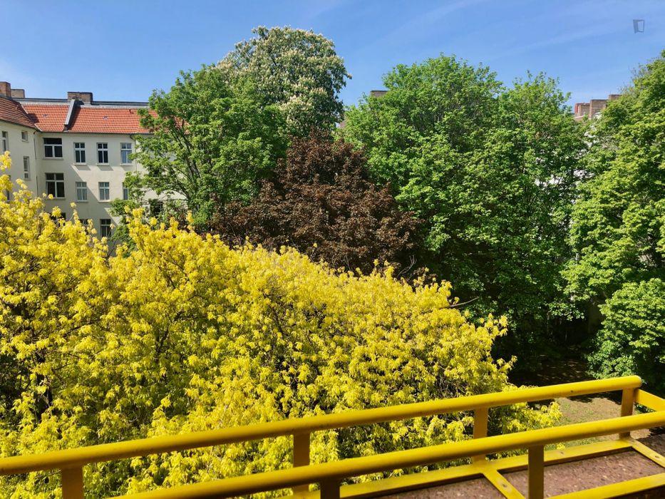 1- bedroom apartment near Ostkreuz train station