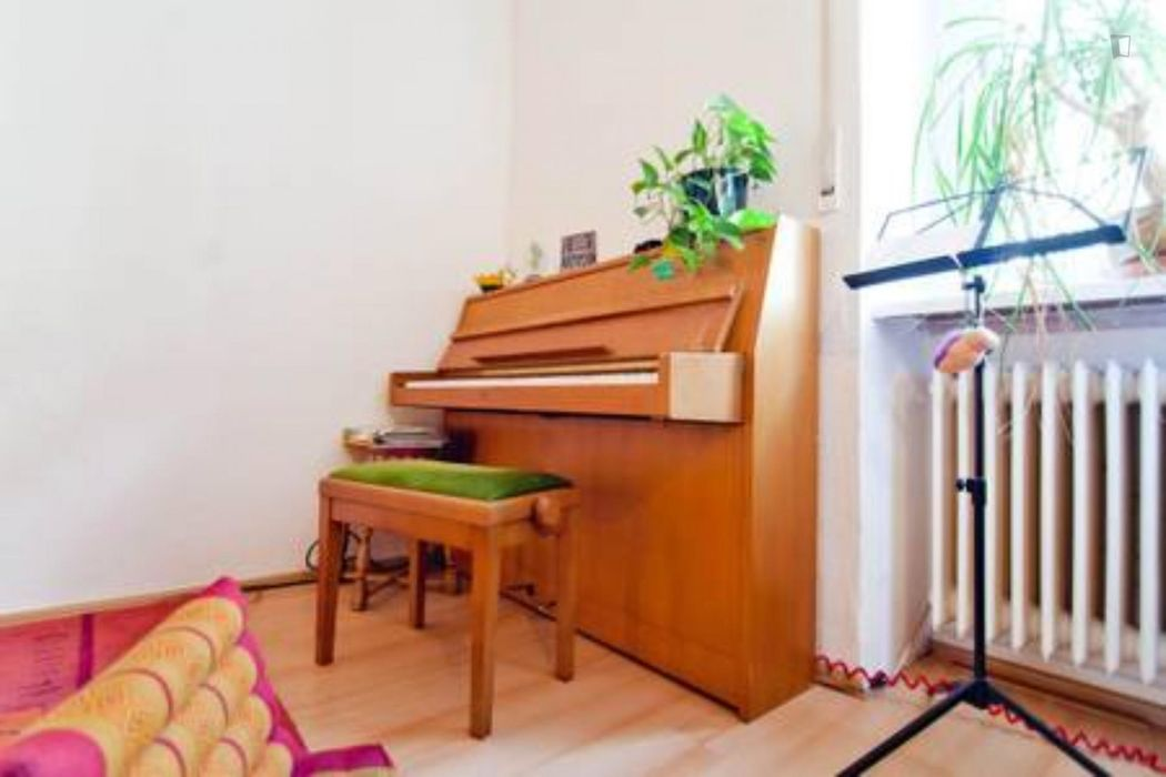 Cosy flat with living room, kitchen, bathroom and piano