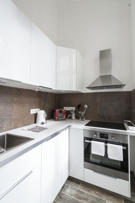 Ample and fresh 1-bedroom apartment in central Mitte district