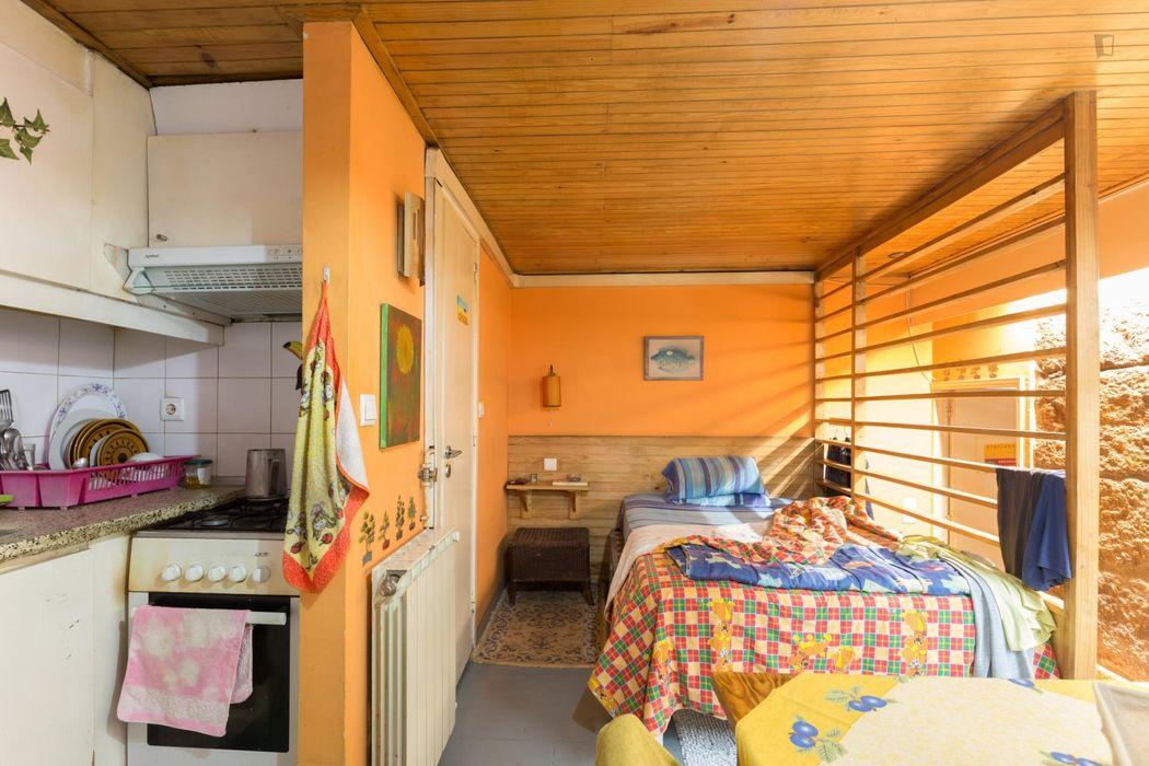 Good-looking studio flat in Cedofeita