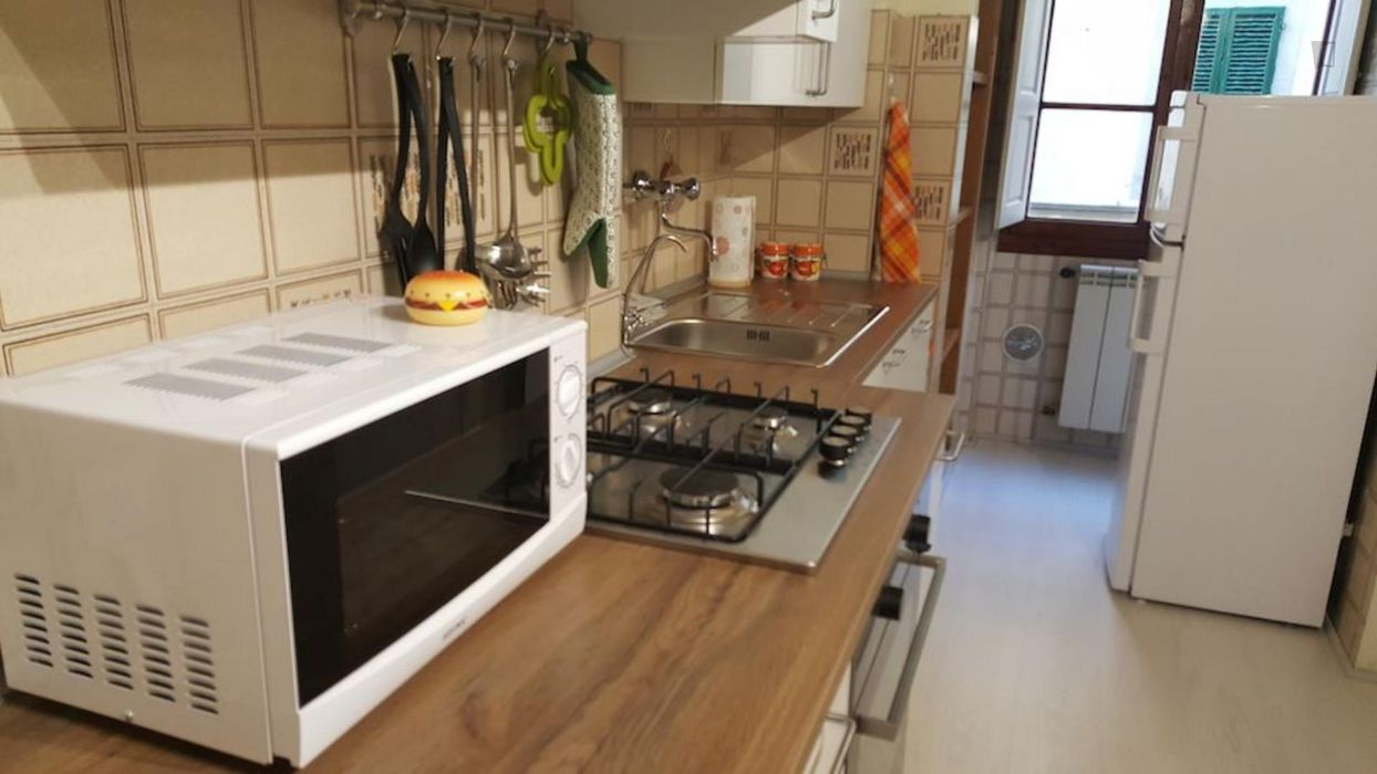 Spacious single bedroom in Florence city centre