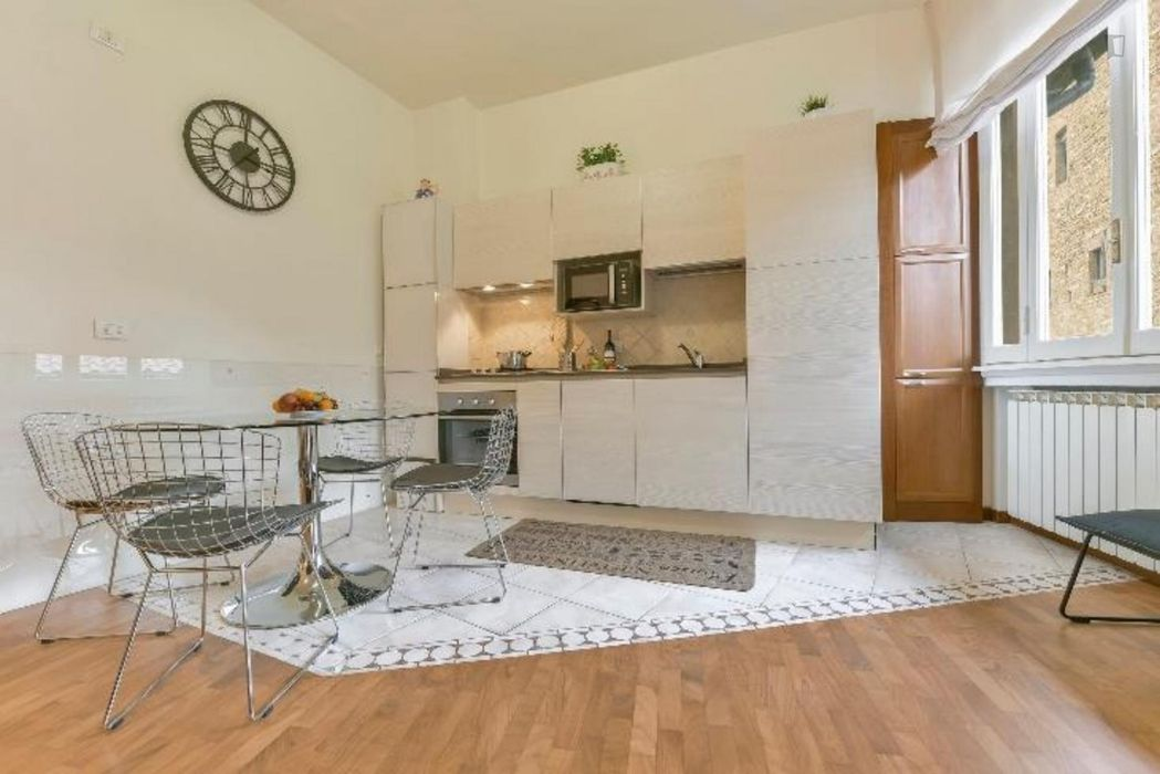 Attractive 1-bedroom apartment in San Frediano