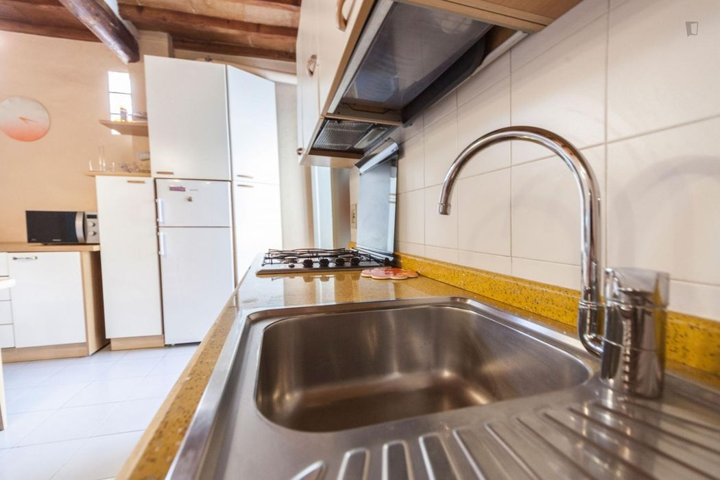 Fantastic 2-bedroom apartment near Basilica di Santa Croce di Firenze
