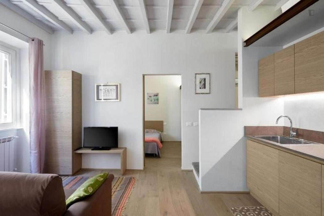 Fantastic 2-bedroom apartment in Duomo