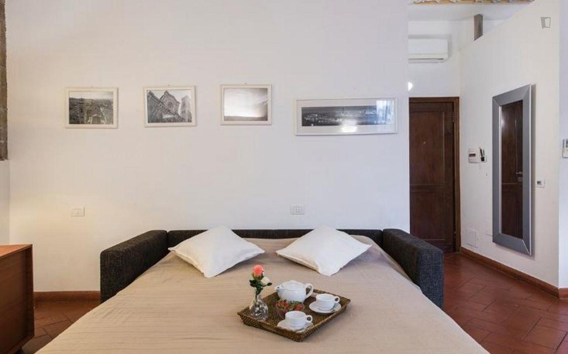 Pleasant studio in Duomo