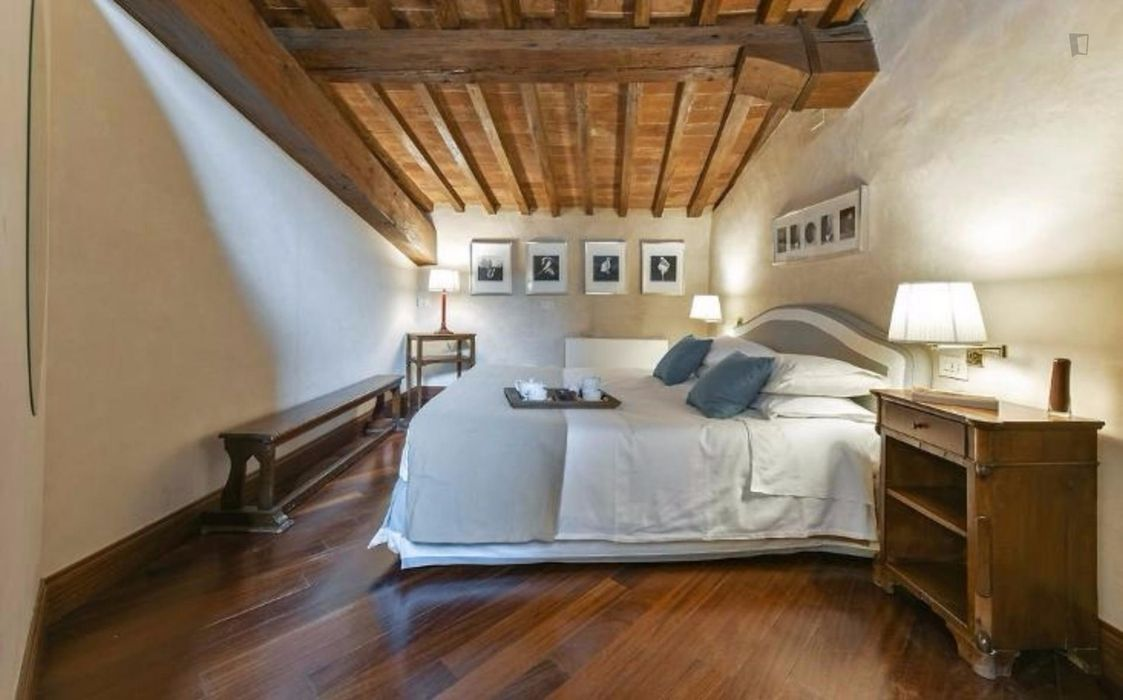 Gorgeous studio close to Basilica di Santo Spirito