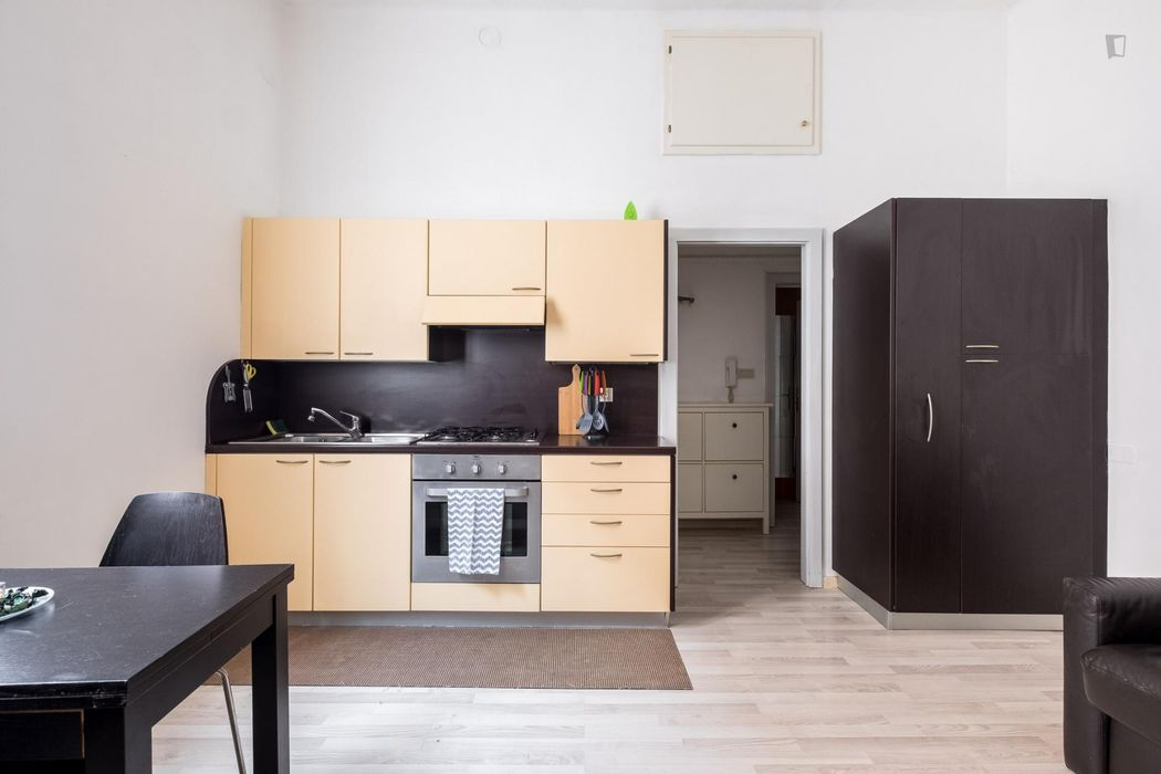 Renovated 1-bedroom apartment well connected to city centre