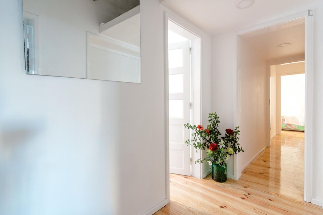 Very cool studio in Alvalade, close to the main University campus area of the city