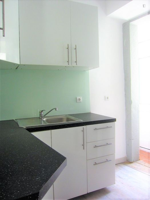 1-bedroom apartment near IST