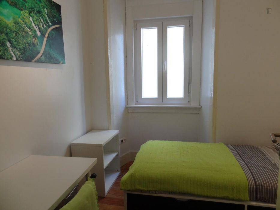 Cosy single bedroom near Jardim Zoológico metro station