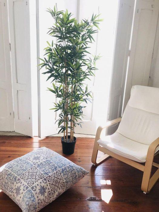 Single Room in a nice Residence, in Arroios